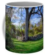 Old Family Plot In Cromwell Valley Park Coffee Mug