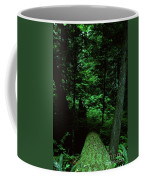 Old Growth Forest At Lost Lake On Mount Hood Coffee Mug