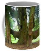 Old Huge Tree Coffee Mug