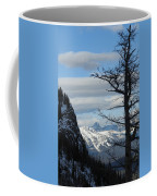Old Larch Tree Has Best View Coffee Mug
