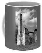Old Limestone House Ruins Coffee Mug