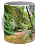 Old Man's Gorge Trail And Caves Hocking Hills Ohio Coffee Mug