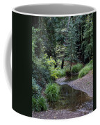 Old Mill Park In Mill Valley 2 Coffee Mug
