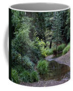 Old Mill Park In Mill Valley Coffee Mug