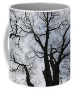Old Oak Overcast Coffee Mug
