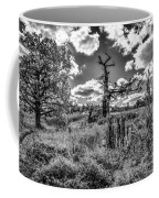 Old Oaks Bw.  Coffee Mug