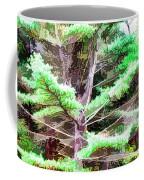 Old Pine Tree Coffee Mug