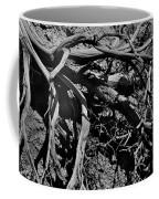 Old Sagebrush Coffee Mug