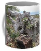 Old Stump At Gold Beach Oregon 4 Coffee Mug