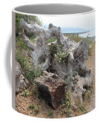 Old Stump At Gold Beach Oregon 5 Coffee Mug