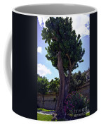 Old Tree In Palermo Coffee Mug