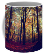 Old Tree Silhouette In Fall Woods Coffee Mug
