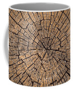 Old Tree Stump Coffee Mug