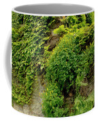 Old Walls Rising From The Water Edge. Coffee Mug