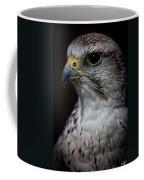 Older And Wiser Coffee Mug