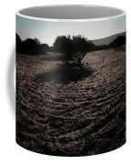 Olive Oil  Coffee Mug