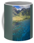 Olowalu Aerial Coffee Mug