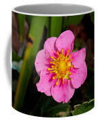 Olympia Pink Coffee Mug