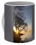 On Fire - Bright Sunrise Through The Willows Coffee Mug