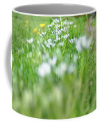 On The Garden Path Coffee Mug