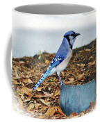 On The Look Out  Coffee Mug