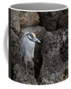 On The Rocks - Yellow-crowned Night Heron Coffee Mug