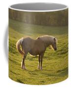 On The Sunny Meadow Coffee Mug