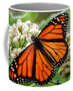 Once Upon A Butterfly 001 Coffee Mug