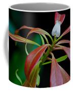 One Andromeda Coffee Mug