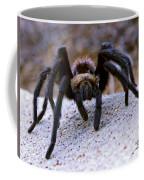 One Big Hairy Spider Coffee Mug