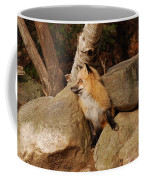 One Foot At A Time Coffee Mug