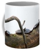 One Hiding Turtle Coffee Mug