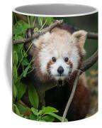 One Intense Critter Coffee Mug