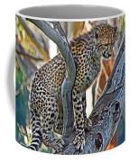 One Little Cheetah Sitting In A Tree Coffee Mug