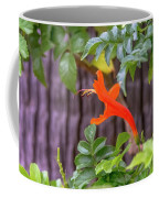 One Lone Flower Remains On The Cape Honeysuckle Coffee Mug