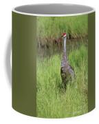 One Sandhill In Marsh Coffee Mug