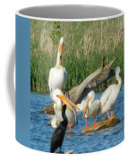 One Sassy Pelican And Friends, West Central Minnesota Coffee Mug
