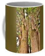One Tree Six Trunks Coffee Mug