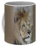 Onyo #25 Coffee Mug