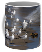 Ducklings In Trouble - Oops Not Into Diversity Coffee Mug
