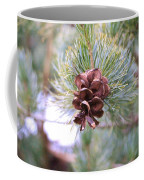 Open Pine Cone Coffee Mug