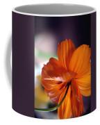 Openings... Coffee Mug