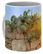 Opuntia Cactus In The Sunset Coffee Mug