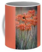 Orange Aloe  Coffee Mug