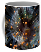 Orange And Black Anemone, Komodo Coffee Mug