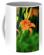 Orange And Green Coffee Mug