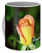 Orange And Yellow Rose Coffee Mug