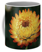 Orange And Yellow Strawflower Coffee Mug
