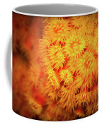 Orange Anemones Coffee Mug