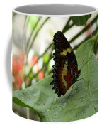 Orange Black Butterfly Coffee Mug